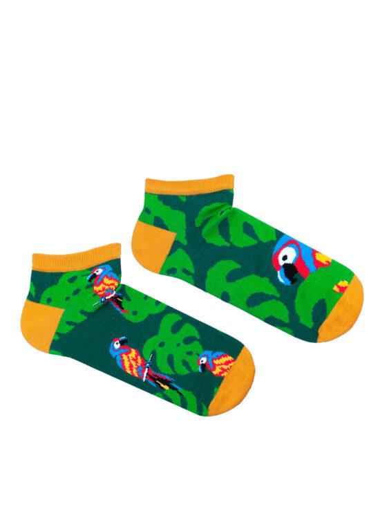 Kolorowe stopki męskie w papugi, kolorowe ary , w otoczeniu tropikalnych liści, na zielonym tle